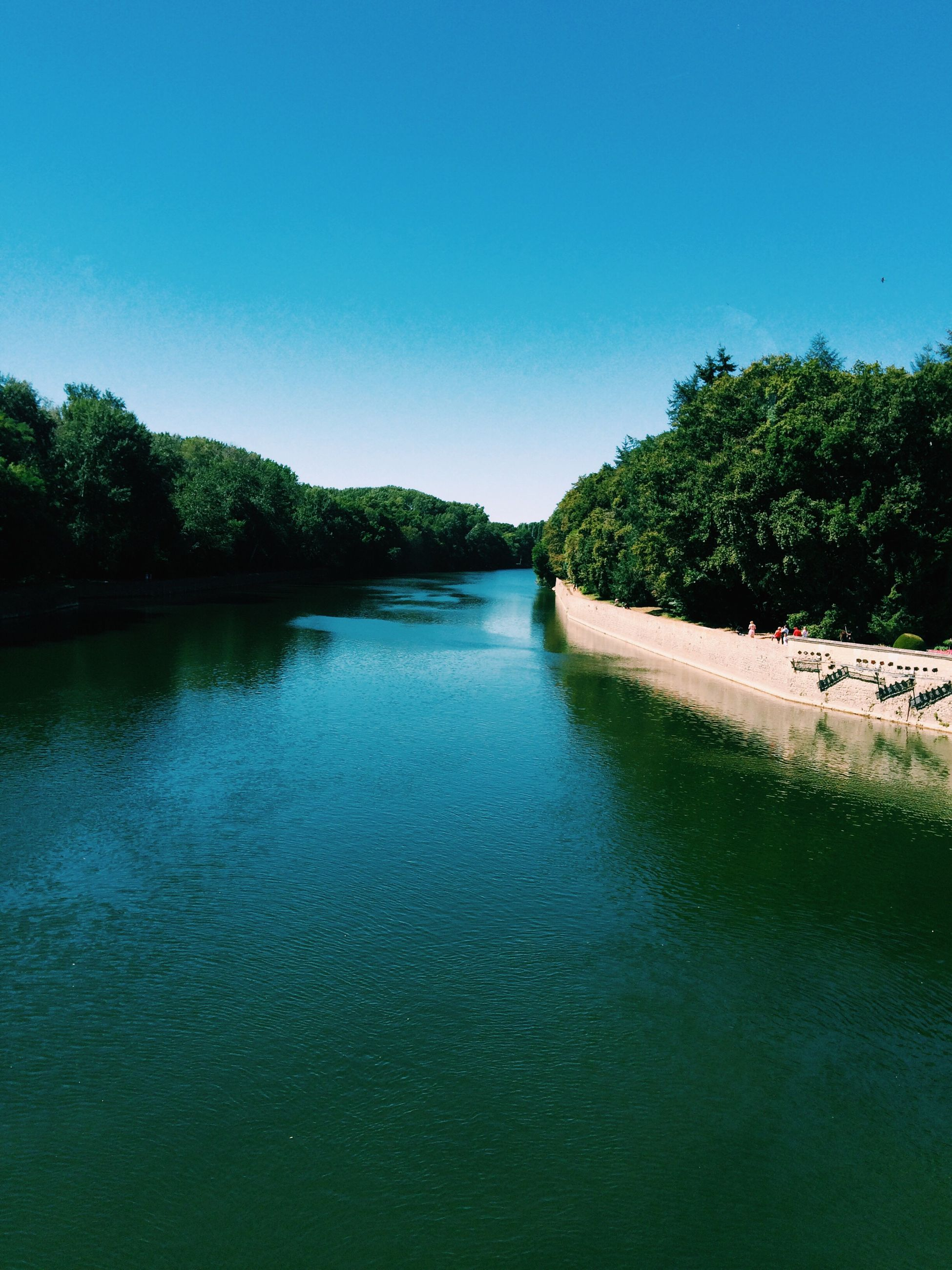 tree, blue, tranquil scene, water, clear sky, tranquility, scenics, waterfront, copy space, beauty in nature, nature, growth, day, calm, non-urban scene, green color, outdoors, diminishing perspective, sky, riverbank, no people, remote, water surface