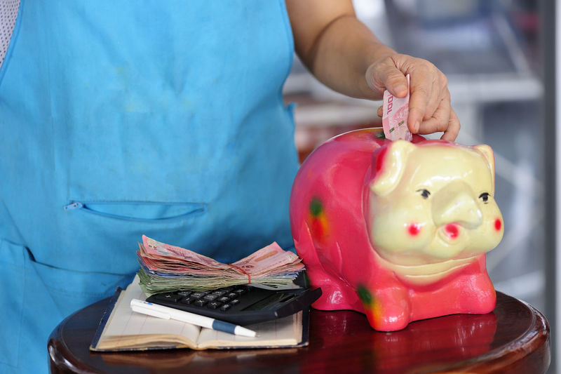 Animal Representation Business Business Finance And Industry Coin Coin Bank Currency Economy Finance Finance And Economy Focus On Foreground Holding Indoors  Inserting Investment Midsection One Person Paper Currency Piggy Bank Representation Responsibility Savings Table Wealth
