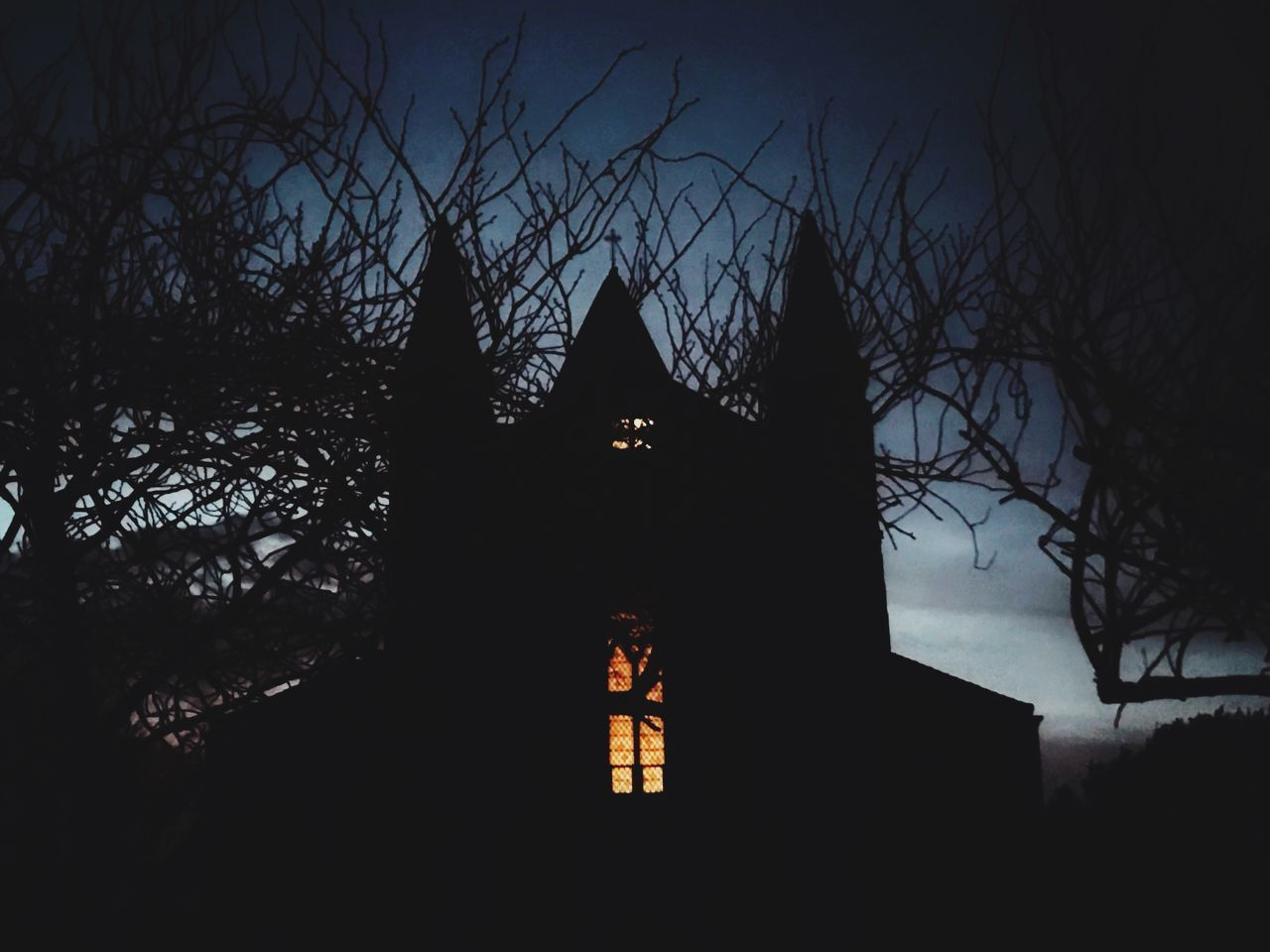 bare tree, no people, tree, silhouette, architecture, night, built structure, low angle view, religion, outdoors, building exterior, branch, place of worship, illuminated, sky, nature