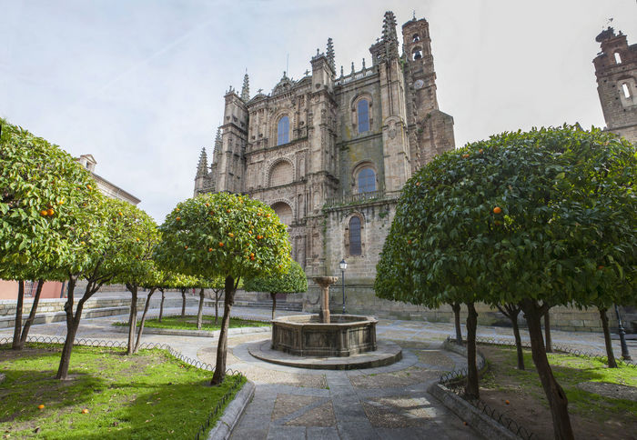 Plasencia New Cathedral. View from orange trees garden, Caceres, Spain Architecture City Day No People Outdoors Sky Statue Travel Destinations Tree