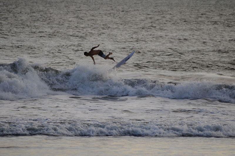 Bird Water Sea Wave Flying Beach Sand Surfer Surfing Surf Tide Crashing Coast Surfboard Shore Water Sport