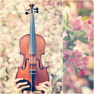 Had fun taking and editing this today. Shot with my Canon 60D, edited in Lightroom, then Luminance and Diptic on the iPod. Oh, and the hands belong to my sister Hannah hgc95 Art Instaaaaah Music Instagramhub Bokeh Jj_forum Spring The_guild Pink Igersmissouri Violin _wg Instrument Jj_pink_ribbon Instagram Musicshot_wg GCS Iloveblossomtrees Musician Crabapple Earlybird Blend Igers Vivaldi IGDaily Jj  Instagood Flowers 100likes