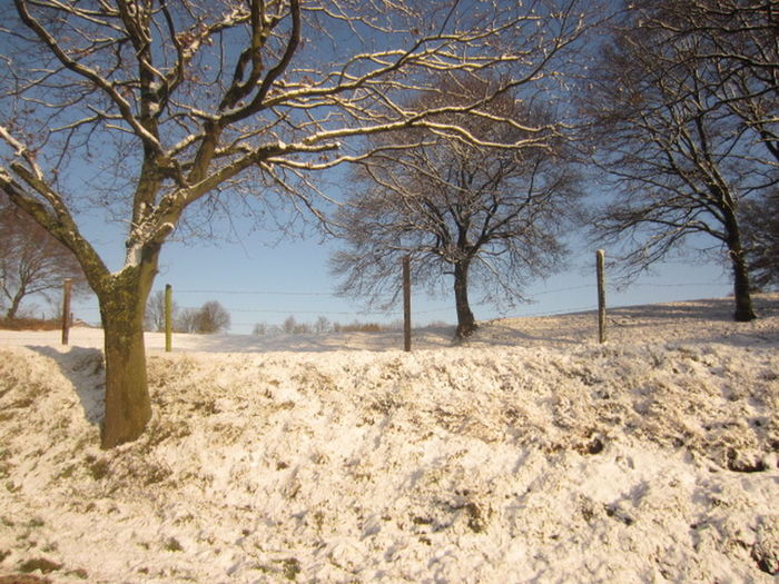 Prachtig_limburg Winter Wonderland Wintertime WinterTime❄❄❄⛄🌀 Loves_Limburg