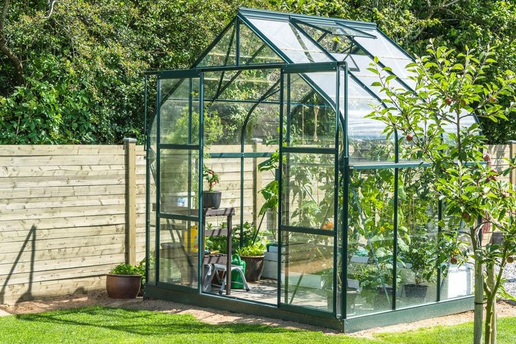Greenhouse in a garden Plantation Plants Glass House Garden Agriculture Springtime Spring Greenery Greenhouse Day Outdoors Tree Built Structure Architecture Building Exterior No People