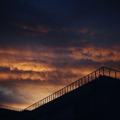 The Sunset · S Z