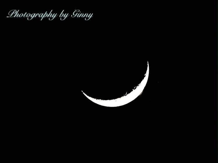Crescent 🌙 Moon No People Crescent Night Close-up Animal Themes Astronomy