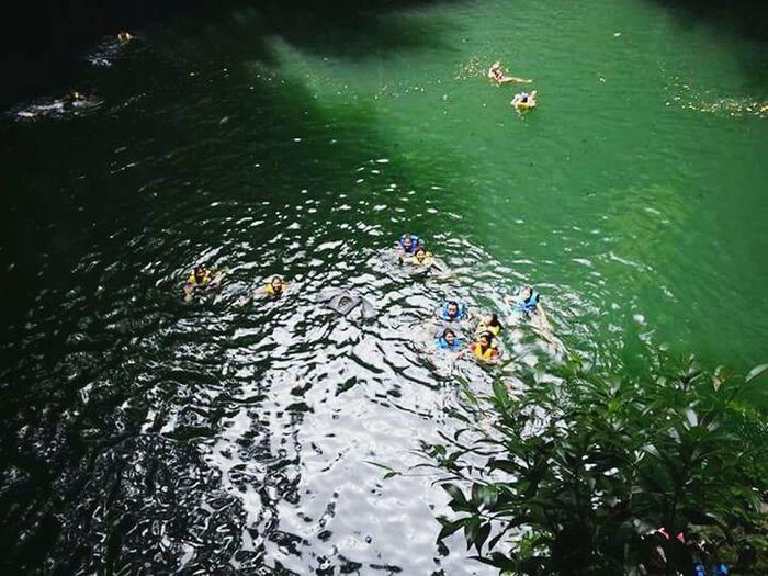 Cenote de Yokdzonot.!! Travel Viaje Travel Photography Nature Natural Beauty Cenotes Naturaleza Beuatifulday Hello World Enjoying Life