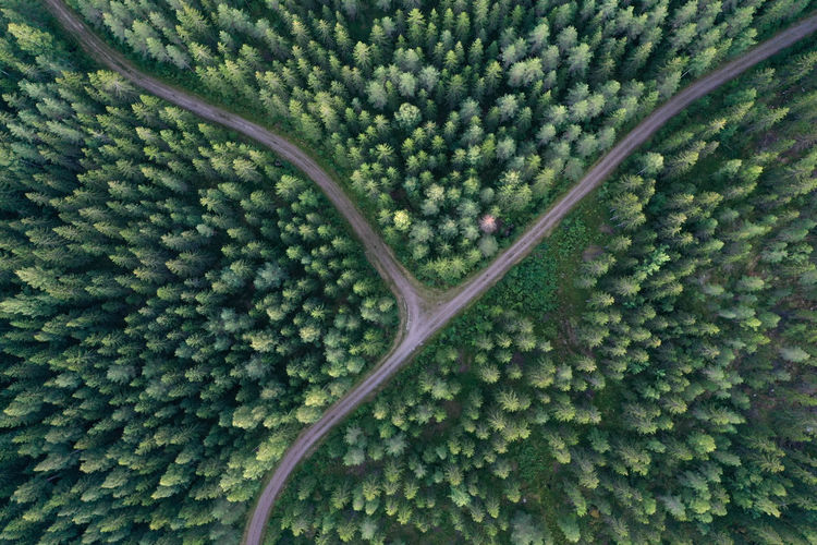 Aerial view of crossroads in a forest in finland