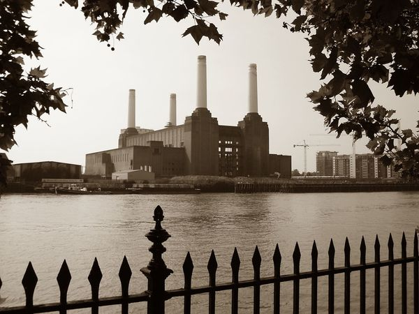 Architecture Built Structure Water Building Exterior Real People Tree Railing River Outdoors Sky Travel Destinations Skyscraper Day Tourism Silhouette Standing City Clear Sky One Person Men Battersea Power Station