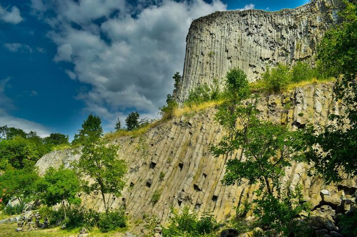 Tree Nature Low Angle View No People Outdoors Growth Sky Beauty In Nature Hegyestű Hungary Beautiful Day Mountain