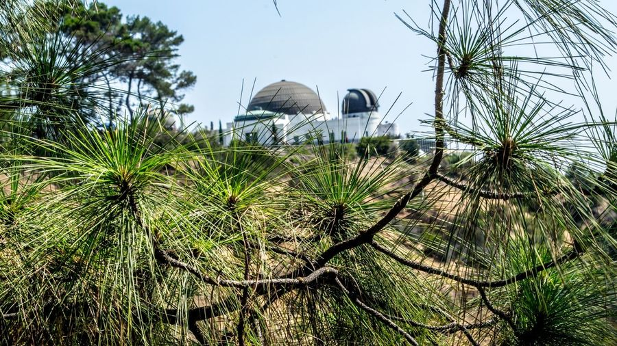 Must See in Los Angeles - From our tour Cali California City Explore Friendlylocalguides Griffith Landscape Losangeles Mustsee Observatory Panorama Panoramic Pattern Views