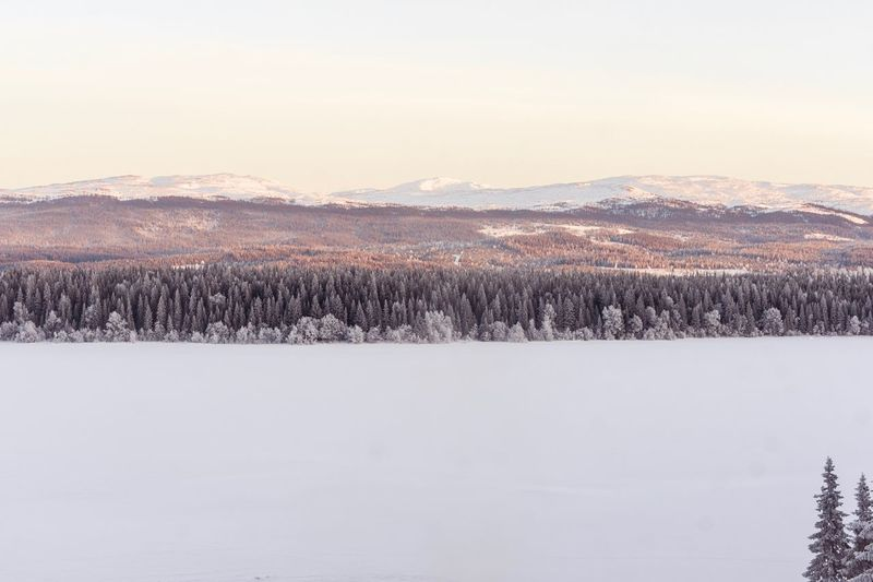 Sweden Photographer Photography Photo Winter Cold Temperature Snow Nature Tranquility Tranquil Scene Beauty In Nature Landscape No People Scenics Outdoors Tree Mountain Sky Day
