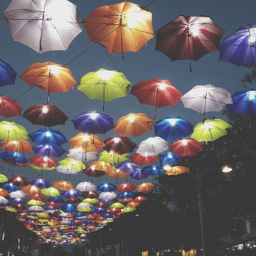 Umberella ella ellaa eh eh ehhh Floria Putrajaya 2014 Lights