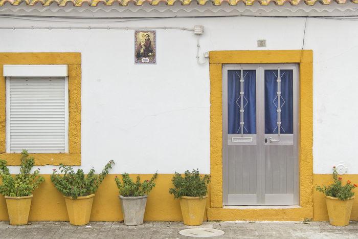 Azinhaga Door Facade Building Facades Old Town Portugal Santarém Window