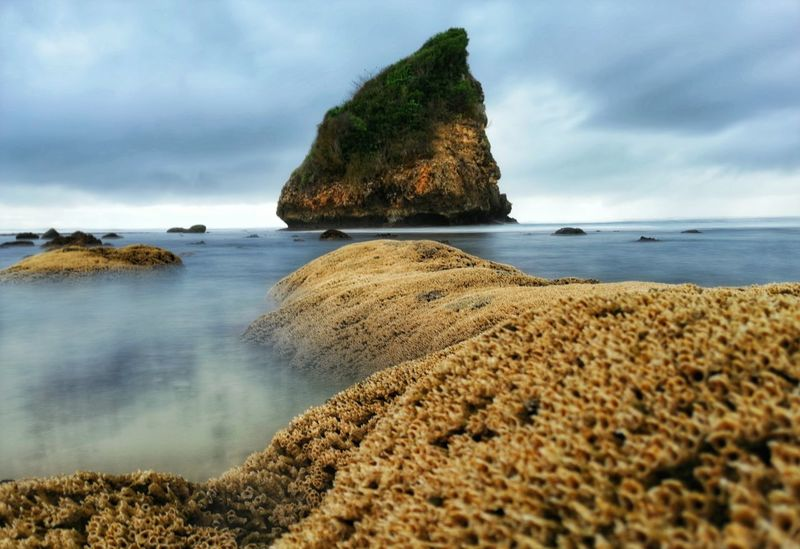 50+ Coastal Feature Pictures HD | Download Authentic Images
