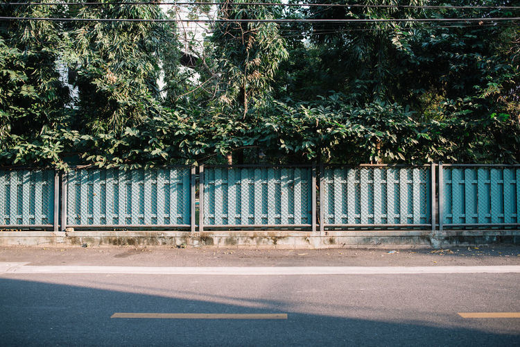 Late Afternoon on an Empty Street Empty Streets Fence Film Look Late Afternoon Magic Hour Minimal Street Virw Nature And City No People Relax Road Side View Sidewalk Solitude Space For Text Street Landscape Street View Streetphotography Sunlight And Shadow Sunset Lovers Sunset Street Tranquility Tree Warm Colors Warm Tone The Secret Spaces TCPM The Architect - 2017 EyeEm Awards
