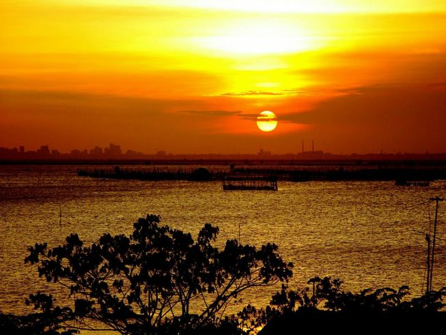 From My Point Of View Learn & Shoot: After Dark Showcase: February Beautiful Sunset Eye4photography  Sunset Silhouettes