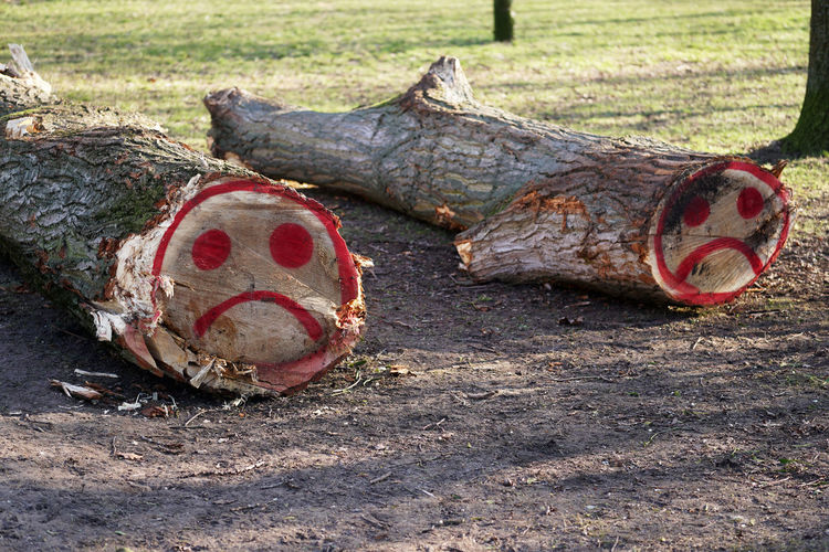 Felled Tree Trunk Log Sad Smiley Face Graffiti Bole Stem Funny Timber Felled Tree Trees Lumbering Forestry Forest Wood Nature Stump Cut Down Lumber Felling Ecology Environment Park Outdoors Fell Outdoor Nobody Tree Trunk Cutting Outside WoodLand Paint No People