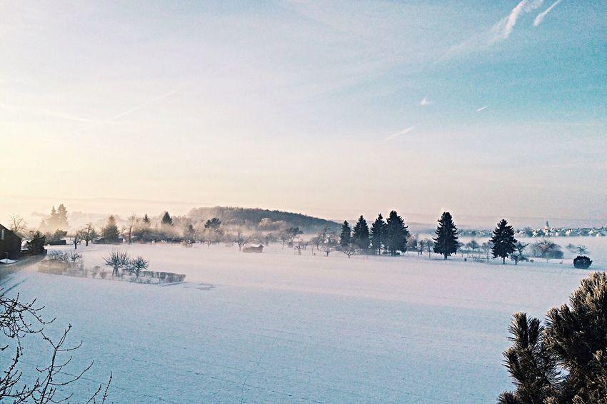 Welcome to winterwonderland!