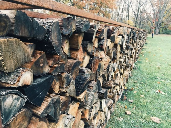 Logs Fall Nature Farnsworth House Outdoors
