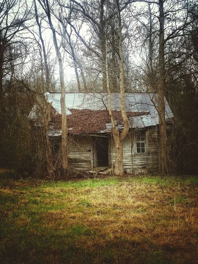 Cabin in the woods...💀the dead of winter💀 Gettyimages Moodjunky Ominous Building Atmospheric Mood Mood Captures Hauntingly Beautiful RuralExploration Eye4photography  Nature's Diversities Beauty In Nature Abandoned House Derelict & Abandoned