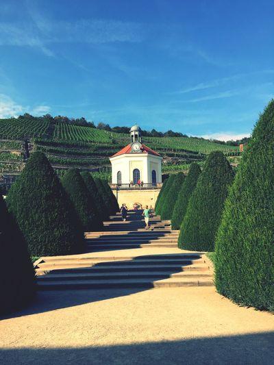 Wackerbarth Schloss Sachsen Wine Blue Sky Sun Summer Hiking
