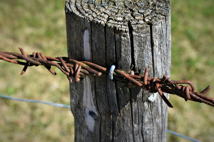 Close-Up Of Barbed Wire On Wooden Post