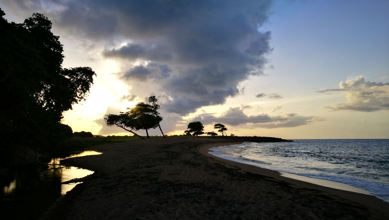 sky, tree, sunset, cloud - sky, palm tree, sea, nature, scenics, beach, silhouette, water, tranquil scene, beauty in nature, tranquility, outdoors, horizon over water, no people, day