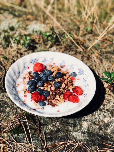 High angle view of breakfast in plate on land