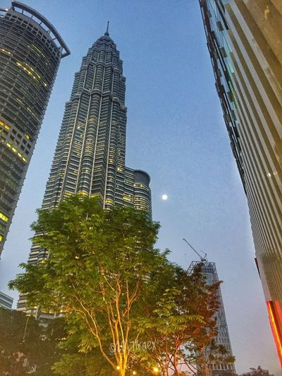 Chasing the Moon 🌙 Skyscraper Architecture City Tall - High Tower Building Exterior Low Angle View Tree Sky No People Modern Built Structure Travel Destinations Outdoors Urban Skyline Cityscape Day sunrise dawns
