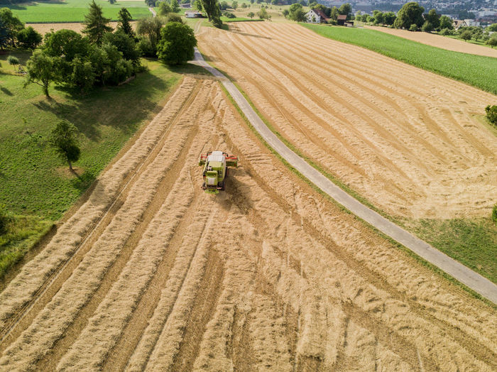 Abundance Adult Aerial View Agricultural Machinery Agriculture Cereal Plant Combine Harvester Crop  Day Distant Farm Farmer Field Growth Harvesting High Angle View Nature Occupation One Person Outdoors People Rural Scene Tractor Transportation Working