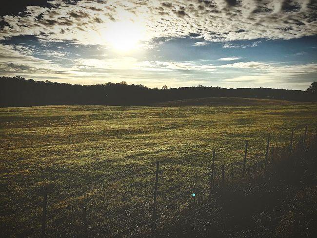 Nature Sunlight Field Tranquility Grass Landscape Sky Sun Outdoors