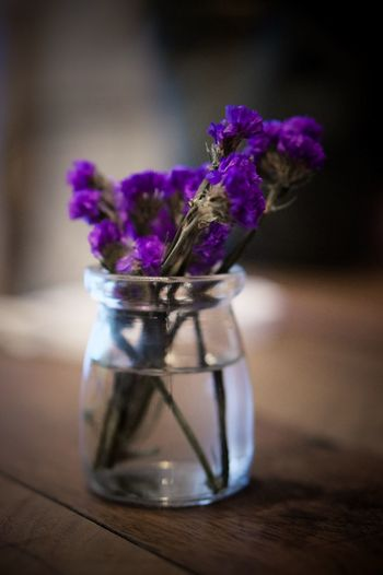 Close-up of purple flower in vase on table