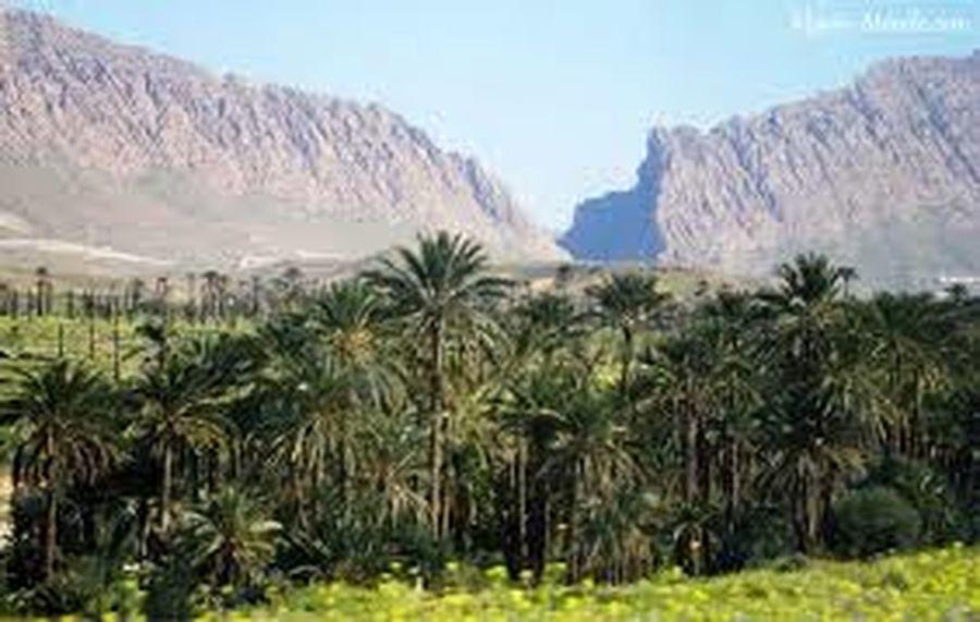 Hello World Taking Photos Biskra. Algeria.