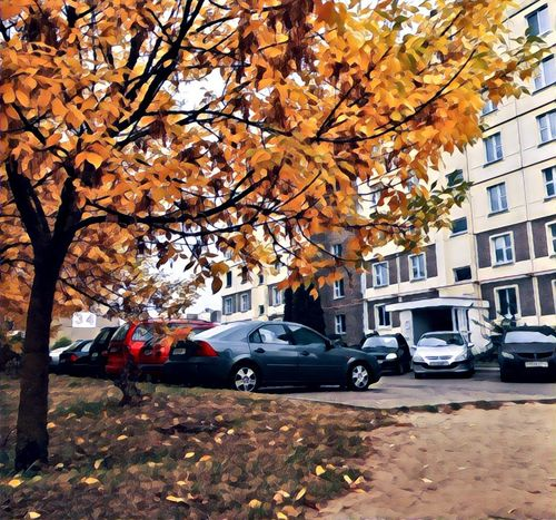 Land Vehicle Car Transportation Mode Of Transport Tree Architecture Building Exterior Built Structure Season  Parking Branch City Stationary Autumn Street Change In Front Of Leaf Parked Day Eyem Gallery First Eyeem Photo Best EyeEm Nature EyeEm Best Shots Nature Eyeem Lover