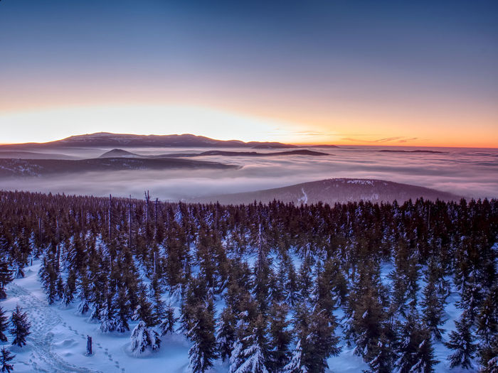 Pink orange sun rise above misty winter land. peaks of mountains above creamy mist in valley.