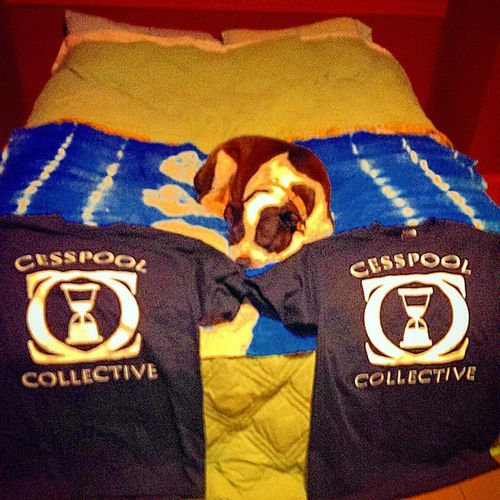 For my cesspool dogs! Cesspoolcollective Steptomyworld