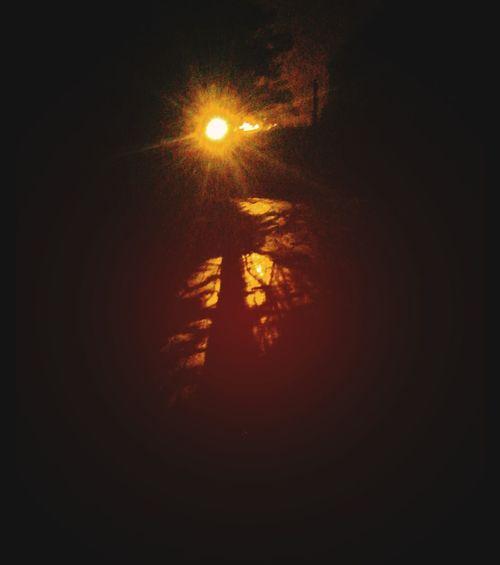 Halloween Walk Halloween_Collection Back Road  Orange Glow Tree Illuminated Sunset Sky