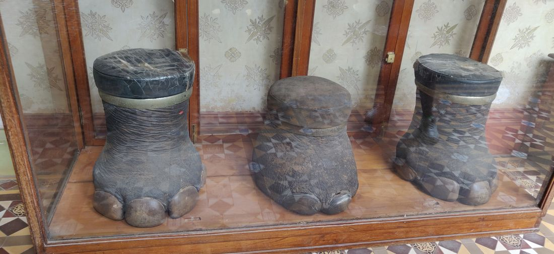 Close-up of old objects in museum