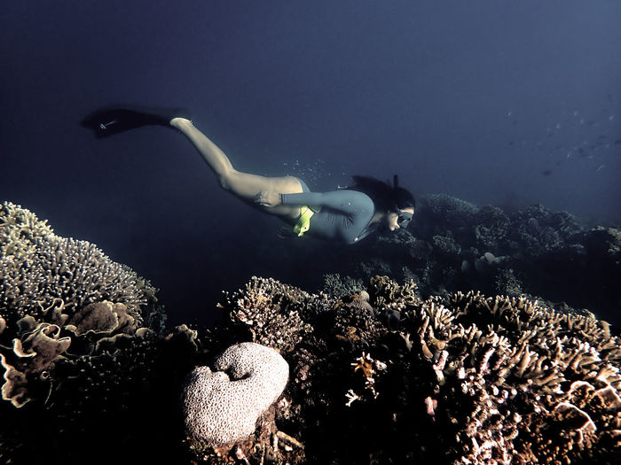 Girls that freedive above the coral reef