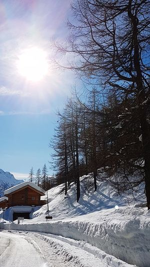 Snow Winter Cold Temperature Nature Sunlight No People Outdoors