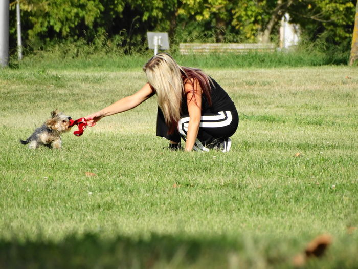 Young woman playing with dog on field