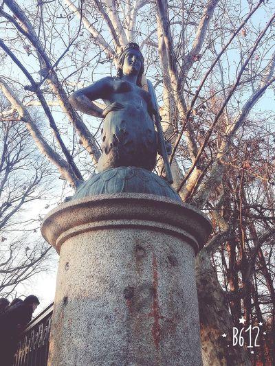 😁 SIRENA Mermaids Historic Pontedellesirene Ponte Italy🇮🇹 Italy❤️ History DuomoDiMilano Parcosempione Sempione Wild Parksempione