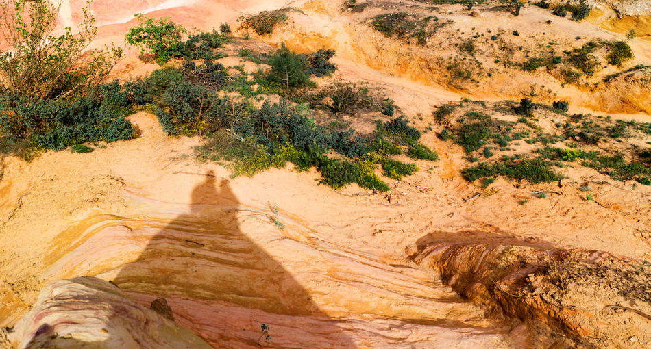 Shadows on ocher Arid Climate Beauty In Nature Curve Day Desert Geology Landscape Nature No People Ocher Outdoors Physical Geography Rock - Object Satellite View Scenics Tree