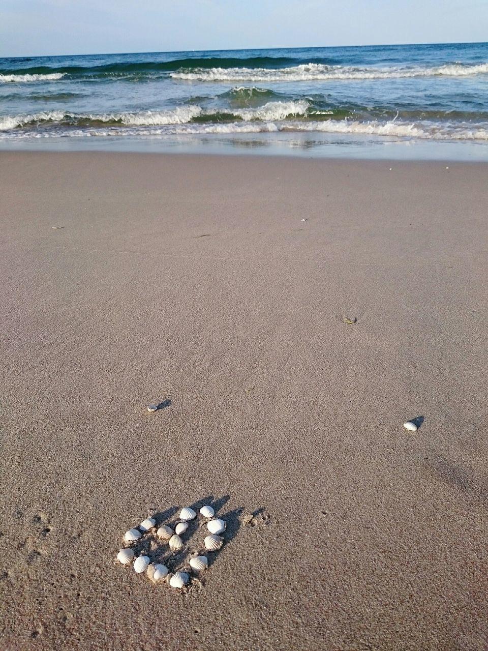 Seashells Arranged In Heart Shape On Beach