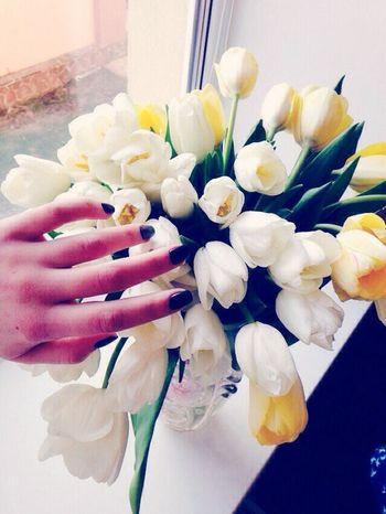 Enjoying Life Lovely Beautiful Fingers Cute Goodmorning Followers Flowers