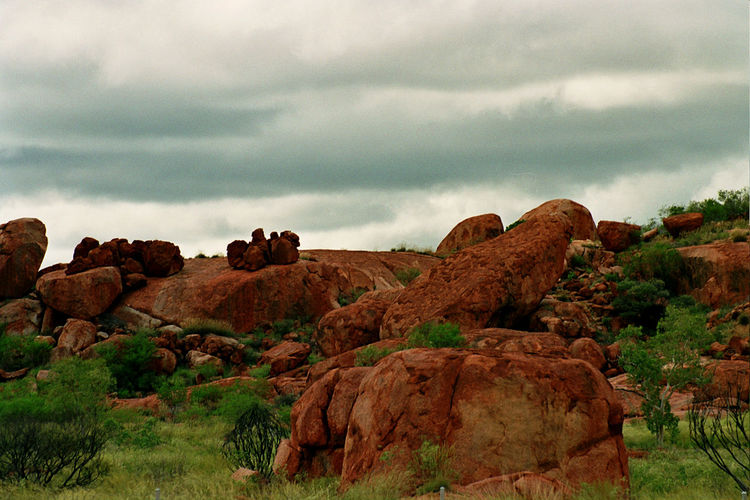 Animal Themes Beauty In Nature Cloud - Sky Day Grass Landscape Mammal Mountain Nature No People Outdoors Rock - Object Scenics Sky Tranquil Scene Tranquility Tree Australia Devils Marbles Perspectives On Nature
