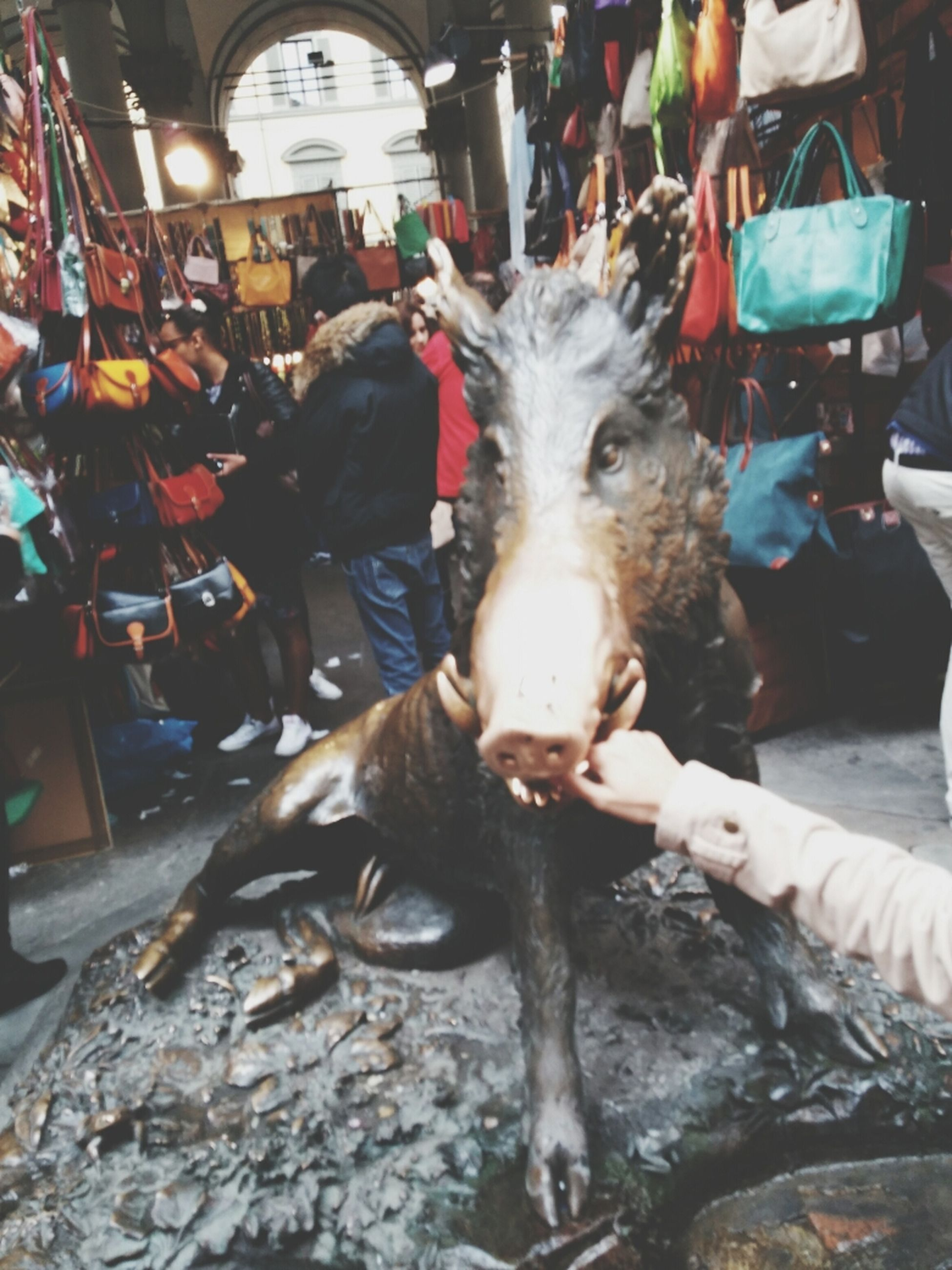 domestic animals, animal themes, mammal, one animal, men, livestock, horse, incidental people, pets, street, dog, standing, working animal, lifestyles, outdoors, day, person, leisure activity