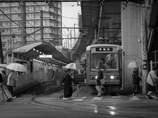 都電を撮るのに一番好きな場所 Super Takumar City Street City View  Olympus Olympus Om-d E-m10 EyeEm Black&white Monochrome ちんちん電車 ご近所散歩 Japan Japan Photography Tokyo Tokyo,Japan Tranvía Straßenbahn Train People Tramway Streetcar City Tram Passenger Train