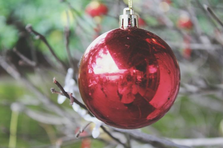 Catch the moment of Joy. Tags: . EyeEmNewHere Christmas Decoration Selfportrait Reflection Photography